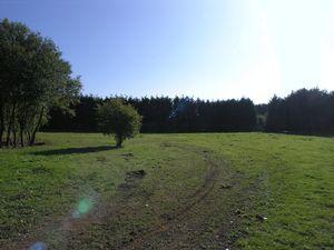 Wildmoor Lane Wildmoor