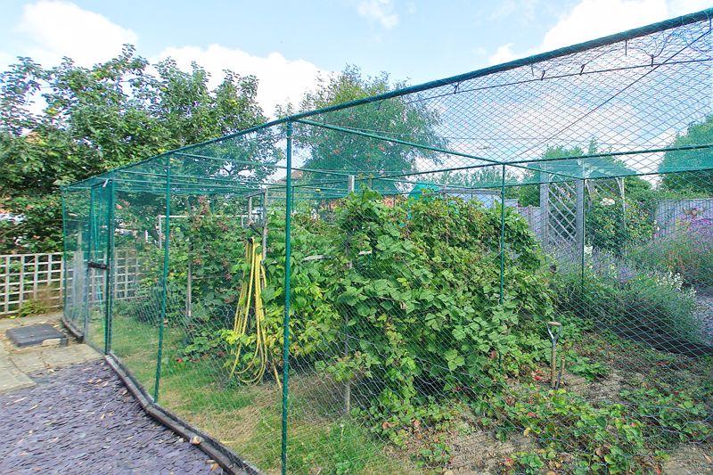 Hook Lane Rose Green