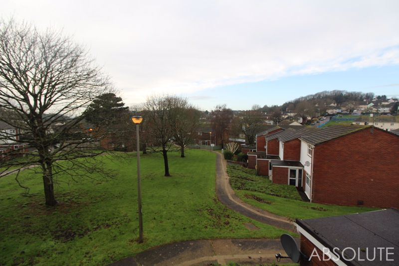 Cornfield Green