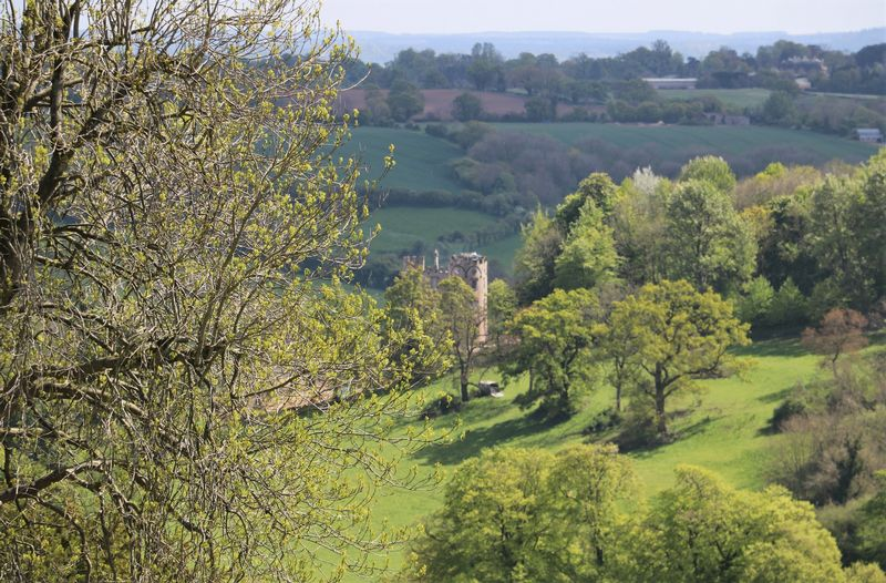 Views of Midford Castle
