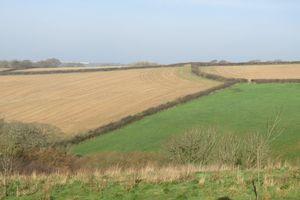 Treffry Road