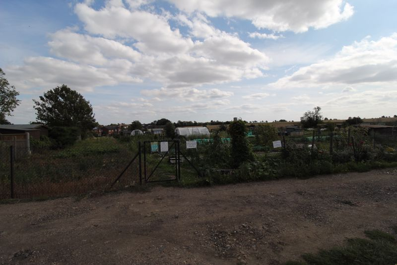 Rear View Of Local Allotments