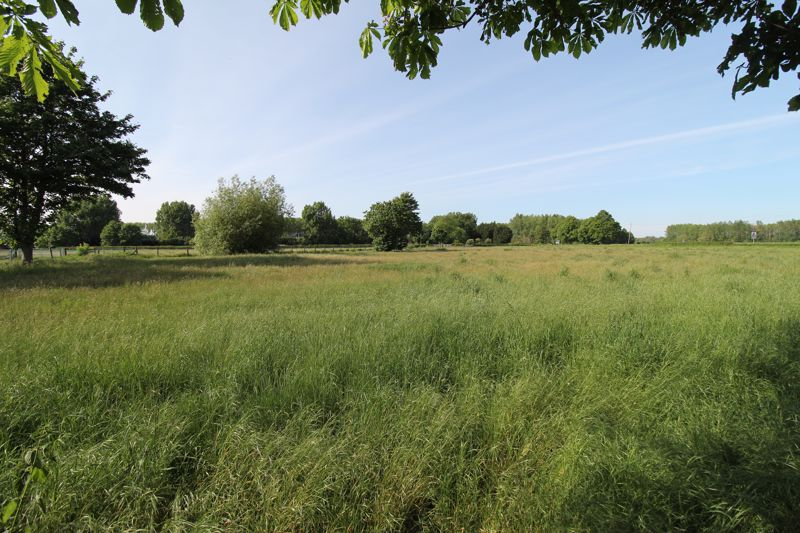 View over neighbouring meadow
