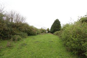 Thorncote Road Hatch