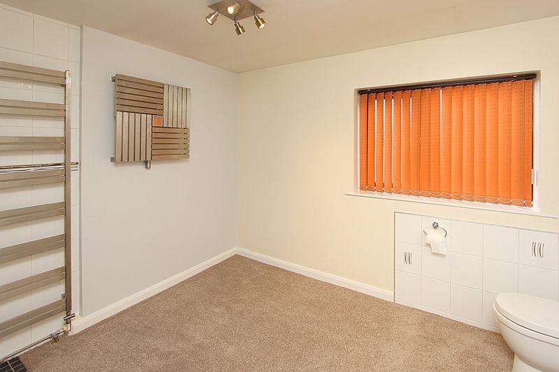 GF Shower Room (alternative view)