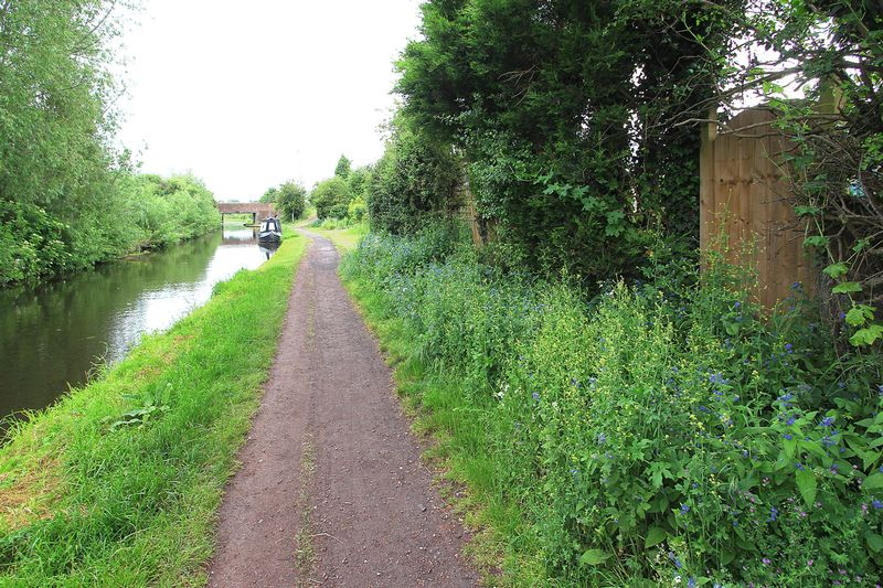 Rear Canal Tow Path