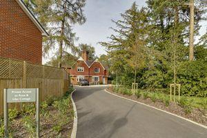 Lynwood Village Rise Road