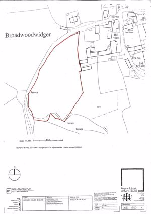 Broadwoodwidger