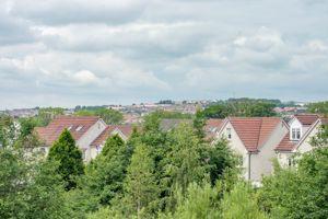 Fieldfare View