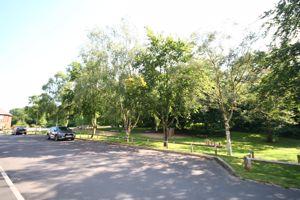 Cornucopia Grove Wedgwood Park, Barlaston