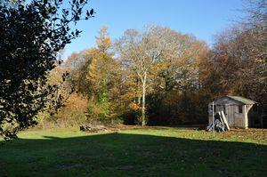 Parkhurst Forest