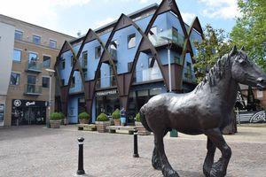 Fairfield Dray Horse Yard