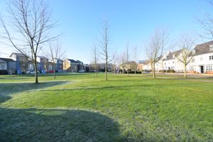 St Nicholas Green Newhall