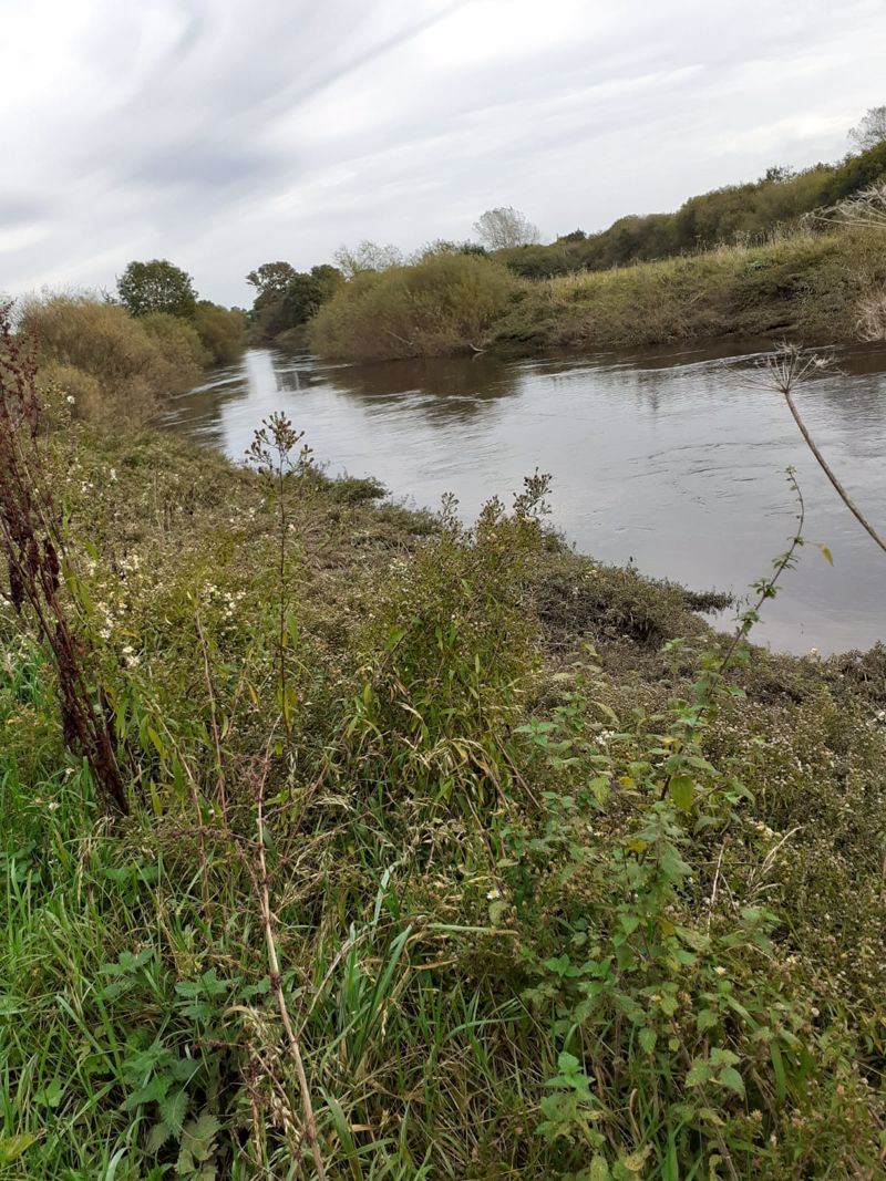 Fishing Rights extending to 360m Holt